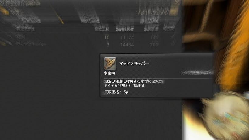 ffxiv_20151005_020942