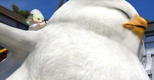 【FF14】いろはす討滅戦開始!「初代でぶチョコボ」の胸をお借りする